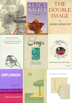 image of debut poetry volumes