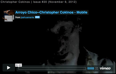 image of Christopher Cokinos
