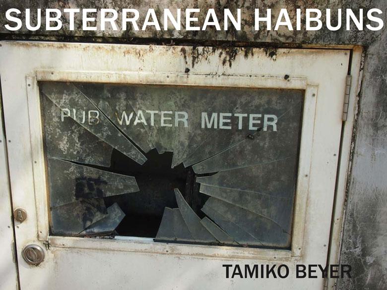 Subterranean Haibuns by Tamiko Beyer