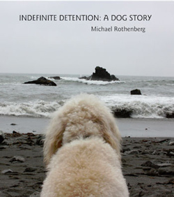 cover of Indefinite Detention: A Dog Story